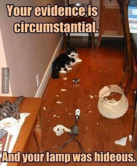 Floor - Your evidence is circumstantial And your lamp was hideous. memebinge.com