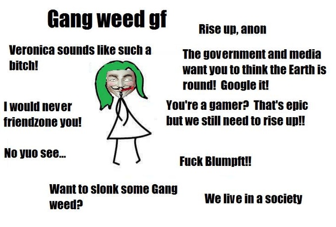 Text - Gang weed gf Rise up, anon Veronica sounds like such a The government and media want you to think the Earth is round! Google it! bitch! You're a gamer? That's epic I would never but we still need to rise up!! friendzone you! No yuo see... Fuck Blumpft!! Want to slonk some Gang We live in a society weed?