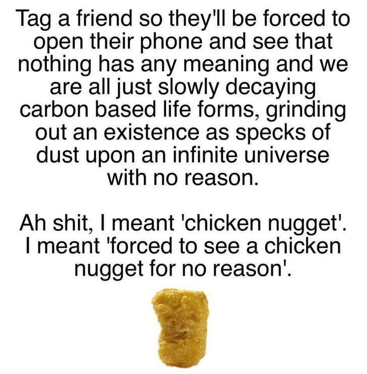 Text - Tag a friend so they'll be forced to open their phone and see that nothing has any meaning and we are all just slowly decaying carbon based life forms, grinding out an existence as specks of dust upon an infinite universe with no reason Ah shit, I meant 'chicken nugget' I meant 'forced to see a chicken nugget for no reason'
