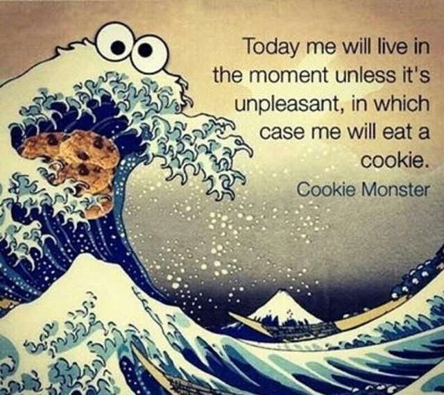 Water - Today me will live in the moment unless it's unpleasant, in which case me will eat a cookie. Cookie Monster is