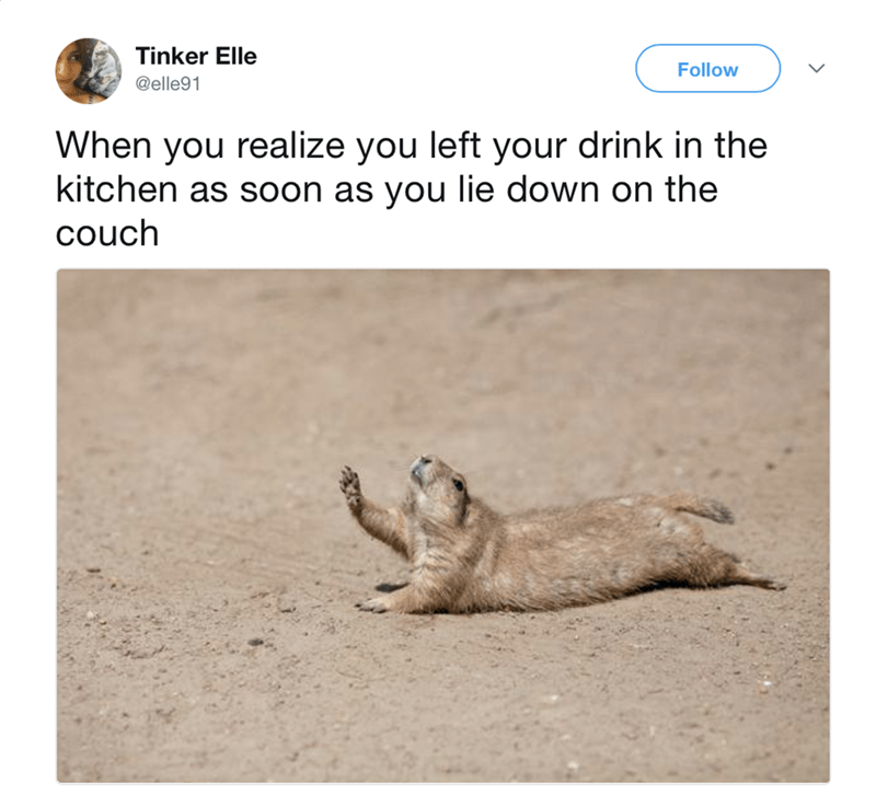 Text - Tinker Elle Follow @elle91 When you realize you left your drink in the kitchen as soon as you lie down on the couch