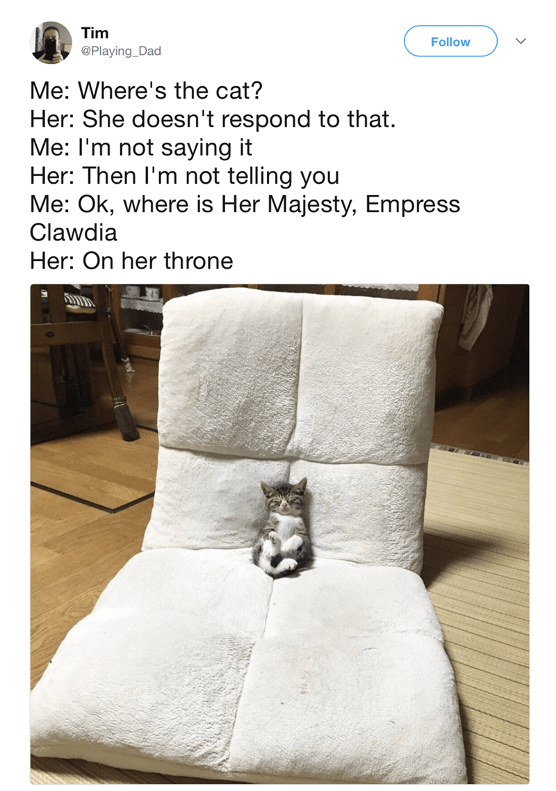 Furniture - Tim @Playing Dad Follow Me: Where's the cat? Her: She doesn't respond to that. Me: I'm not saying it Her: Then I'm not telling you Me: Ok, where is Her Majesty, Empress Clawdia Her: On her throne