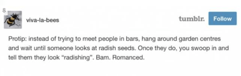 "Text - 8 tumblr. Follow viva-la-bees Protip: instead of trying to meet people in bars, hang around garden centres and wait until someone looks at radish seeds. Once they do, you swoop in and tell them they look ""radishing"". Bam. Romanced."