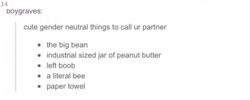Text - 14 Doygraves: cute gender neutral things to call ur partner the big bean industrial sized jar of peanut butter left boob a literal bee paper towel