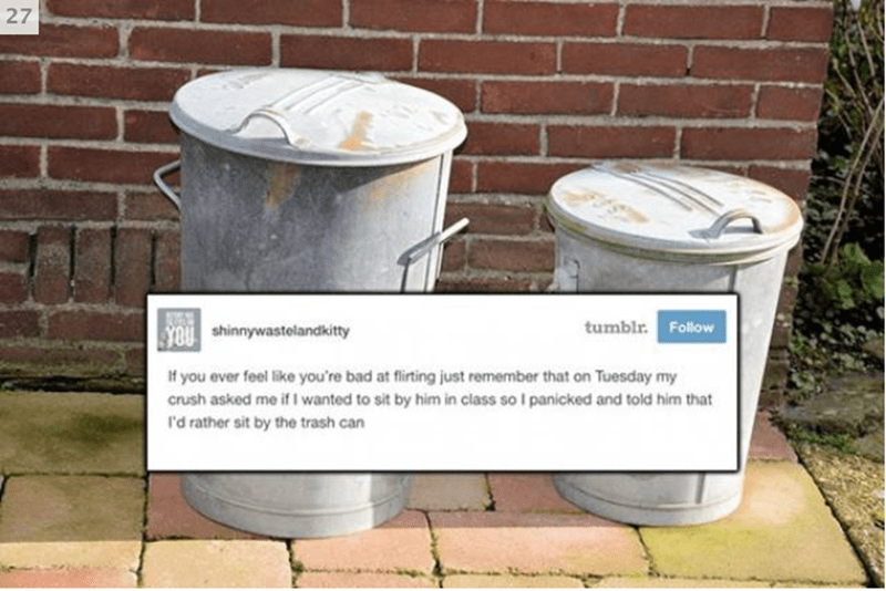 Product - 27 tumblr. Follow YOU shinnywastelandkitty If you ever feel like you're bad at flirting just remember that on Tuesday my crush asked me if I wanted to sit by him in class so I panicked and told him that I'd rather sit by the trash can