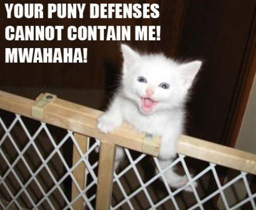 Cat - YOUR PUNY DEFENSES CANNOT CONTAIN ME! MWAHAHA!