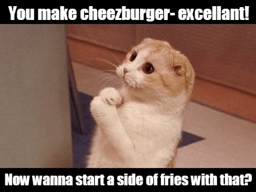 Cheezburger Image 9151206656