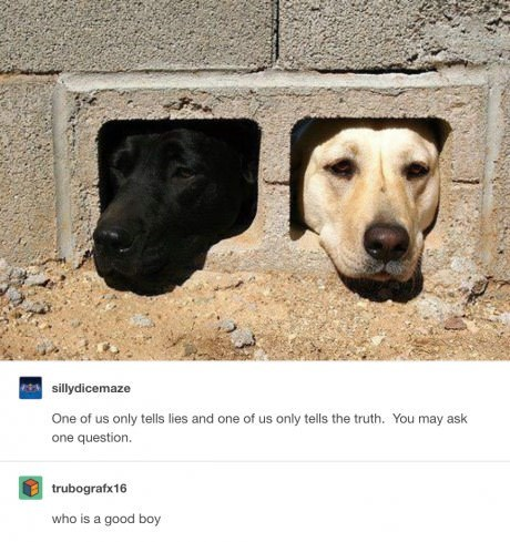 one black and one white dog with heads coming out of bricks you may ask one question