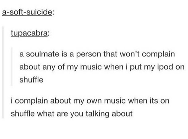 music meme - Text - a-soft-suicide: tupacabra: a soulmate is a person that won't complain about any of my music when i put my ipod on shuffle i complain about my own music when its on shuffle what are you talking about