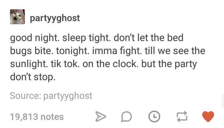 music meme - Text - partyyghost good night. sleep tight. don't let the bed bugs bite. tonight. imma fight. till we see the sunlight. tik tok. on the clock. but the party don't stop Source: partyyghost 19,813 notes