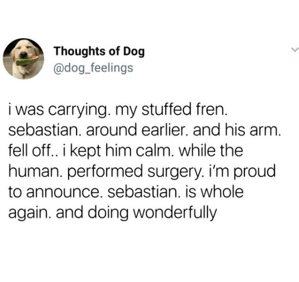 Text - Thoughts of Dog @dog_feelings i was carrying. my stuffed fren. sebastian. around earlier. and his arm. fell off.. i kept him calm. while the human. performed surgery. i'm proud to announce. sebastian. is whole again. and doing wonderfully