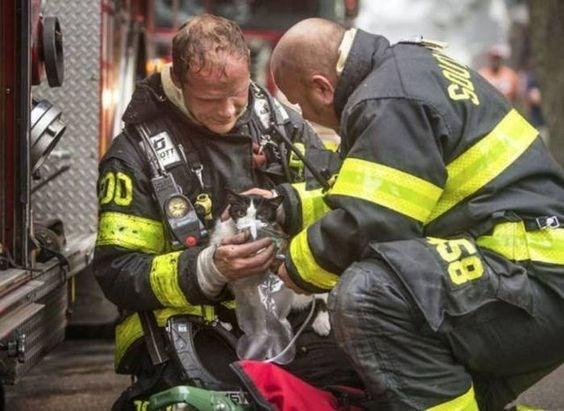 Emergency service - 58
