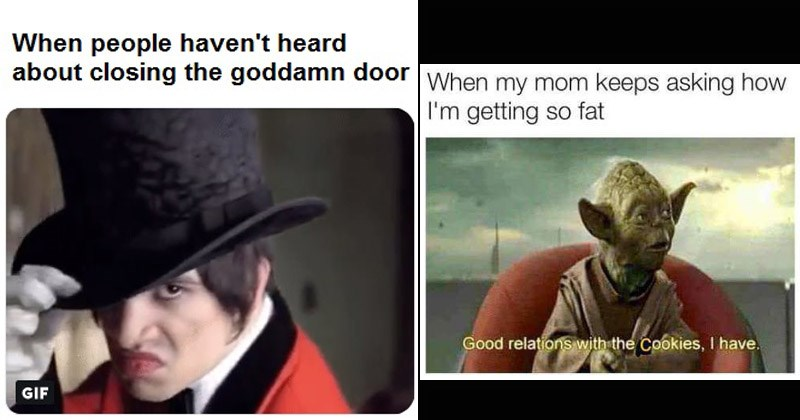 Funny random memes and tweets | people haven't heard about closing goddamn door GIF Panic at the Disco I Write Sins Not Tragedies | my mom keeps asking getting so fat Good relations with Cookies have. Yoda Star wars
