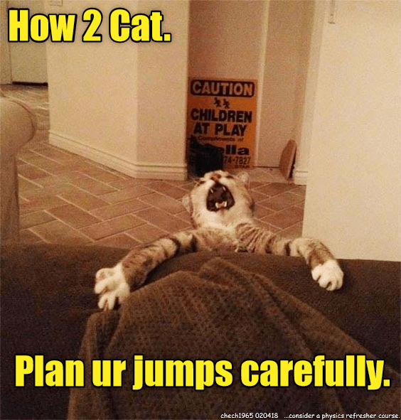 Cat - How 2 Cat. CAUTION CHILDREN AT PLAY lla 74-782 Plan ur jumps carefully. chech1965 020418consider a physics refresher course.