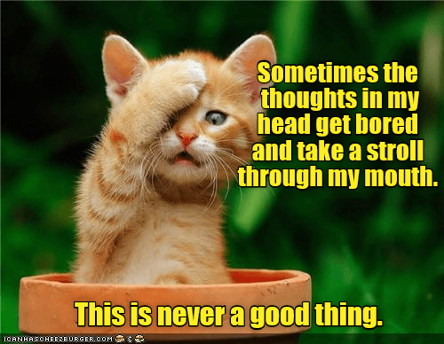 Cat - Sometimes the thoughts in my head get bored and take a stroll through my mouth. This is never a good thing. ICANHASCHEE2EURGER cOM