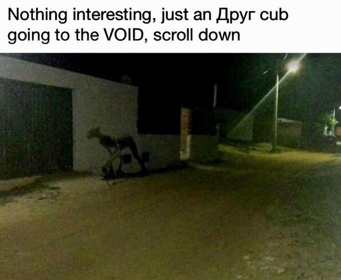 Grass - Nothing interesting, just an Apyr cub going to the VOID, scroll down