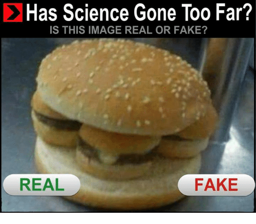 Cheezburger Image 9152576256