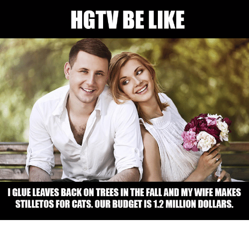 meme - Facial expression - HGTV BE LIKE I GLUE LEAVES BACK ON TREES IN THE FALL AND MY WIFE MAKES STILLETOS FOR CATS. OUR BUDGET IS 1.2 MILLION DOLLARS.