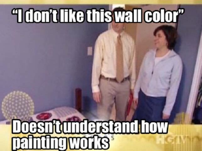 "meme - Product - ""I don't like this wall color"" Doesntunderstand how painting works HGIV"