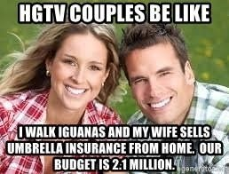 meme - Facial expression - HGTV COUPLES BE LIKE IWALK IGUANAS AND MY WIFE SELLS UMBRELLA INSURANCE FROM HOME, OUR BUDGET IS 2:1 MILLION genergto