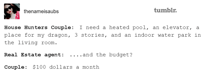 meme - Text - tumblr. thenameisaubs House Hunters Couple: I need a heated pool, an elevator, a place for my dragon, 3 stories, and an indoor water park in the living room. Real Estate agent: ... .and the budget? Couple: $100 dollars a month