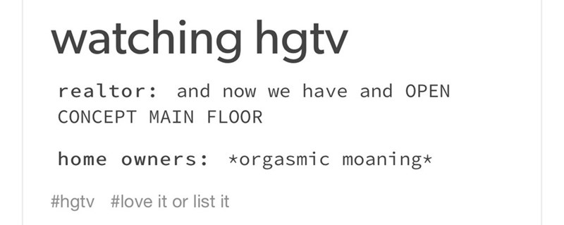 meme - Text - watching hgtv realtor: and now we have and OPEN CONCEPT MAIN FLOOR home owners: *orgasmic moaning* #hgtv #love it or list it