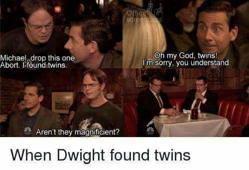 Photo caption - The Office soreenca s Oh my God, twins! Im sorry, you understand Michael drop this one Abort. Ifound twins. Aren't they magnificient? When Dwight found twins