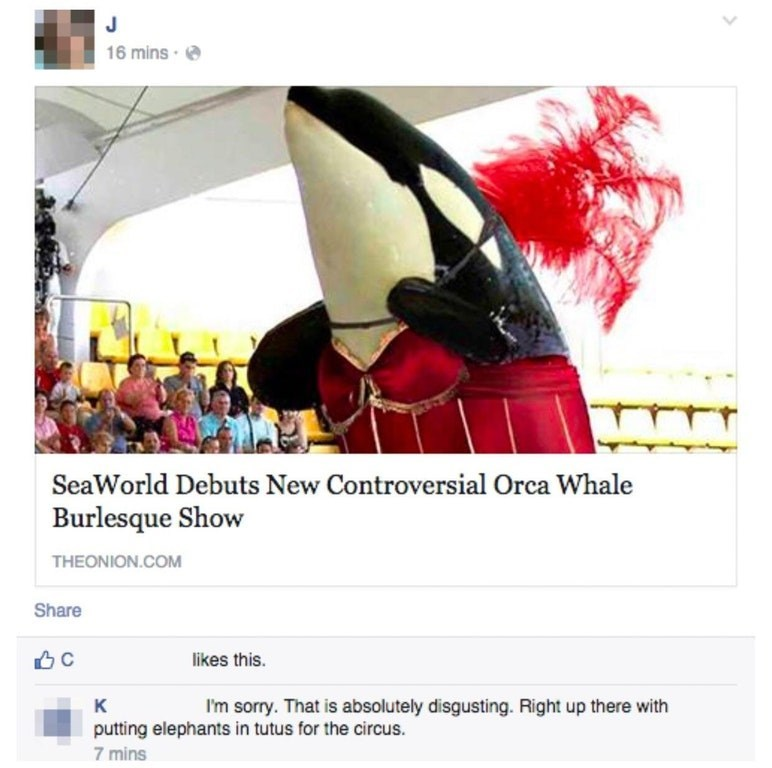 Fictional character - 16 mins SeaWorld Debuts New Controversial Orca Whale Burlesque Show THEONION.COM Share C likes this. к I'm sorry. That is absolutely disgusting. Right up there with putting elephants in tutus for the circus. 7 mins