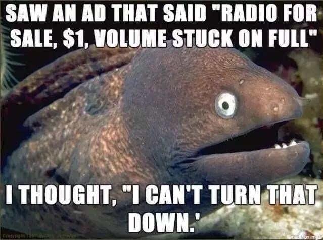 """Fish - SAW AN AD THAT SAID """"RADIO FOR SALE, $1, VOLUME STUCK ON FULL"""" I THOUGHT, """"I CAN'T TURN THAT DOWN maduon im"""