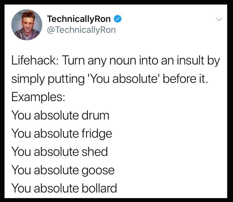 """Text - TechnicallyRon @TechnicallyRon Lifehack: Turn any noun into an insult by simply putting """"You absolute' before it. Examples: You absolute drum You absolute fridge You absolute shed You absolute goose You absolute bollard"""
