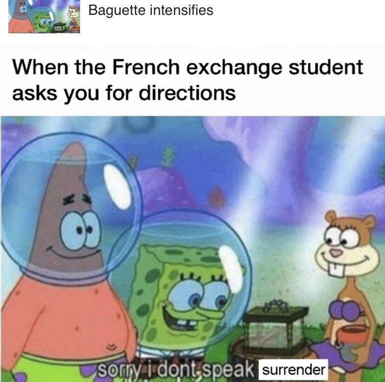 Cartoon - Baguette intensifies When the French exchange student asks you for directions sorry idont speak surrender