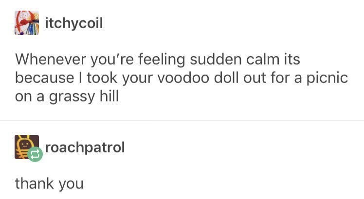 Text - itchycoil Whenever you're feeling sudden calm its because I took your voodoo doll out for a picnic on a grassy hill roachpatrol thank you