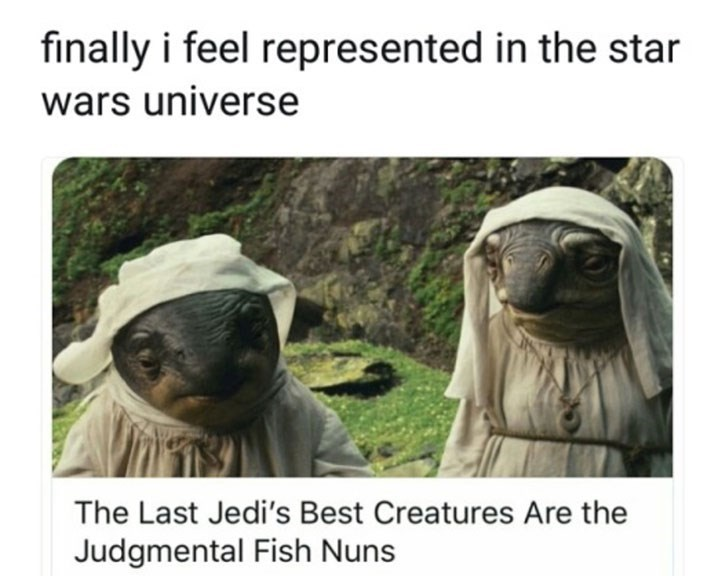 Adaptation - finally i feel represented in the star wars universe The Last Jedi's Best Creatures Are the Judgmental Fish Nuns