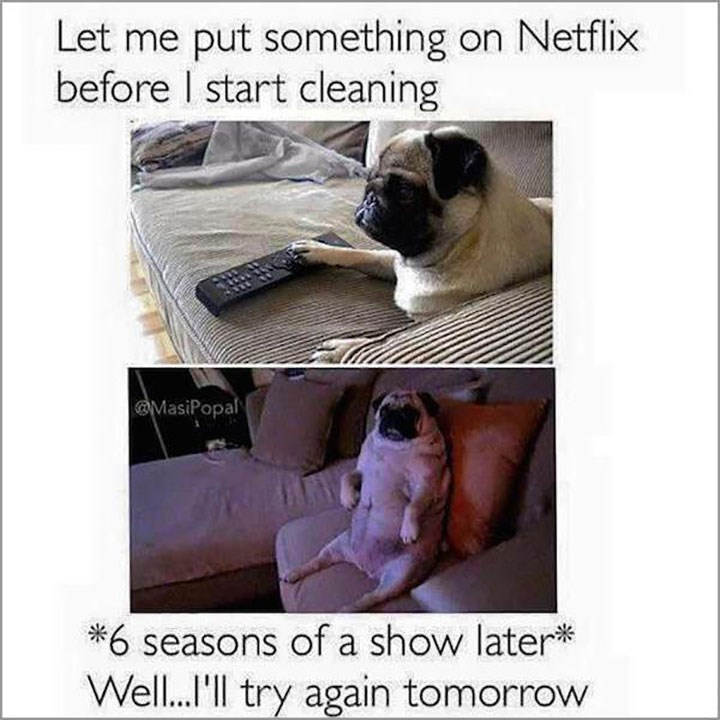 Pug - Let me put something on Netflix before I start cleaning @MasiPopal *6 seasons of a show later* Well...'l try again tomorrow