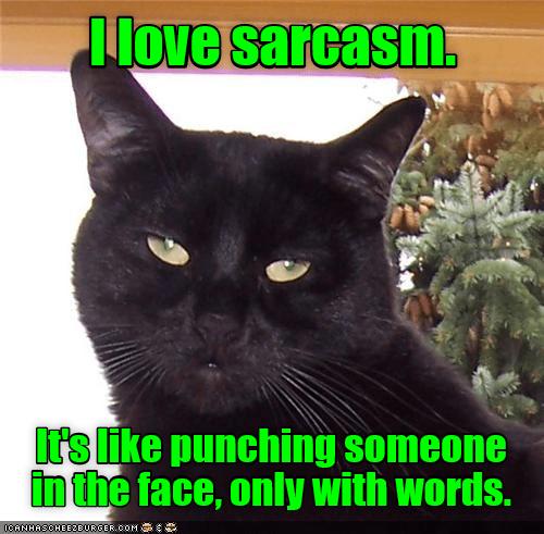 cat meme sarcasm - 9153814784
