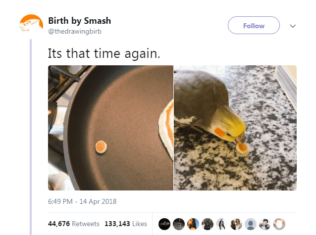 Product - Birth by Smash Follow @thedrawingbirb Its that time again. 6:49 PM-14 Apr 2018 44,676 Retweets 133,143 Likes