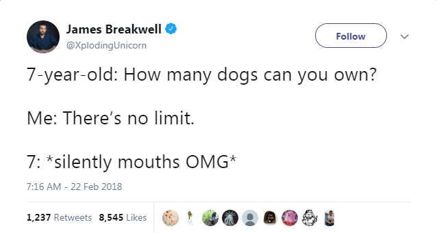 Text - James Breakwell Follow @XplodingUnicorn 7-year-old: How many dogs can you own? Me: There's no limit. 7: *silently mouths OMG* 7:16 AM - 22 Feb 2018 1,237 Retweets 8,545 Likes