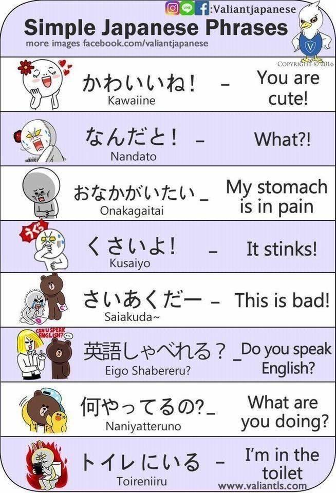 learn japanese - Text - fValiantjapanese LNE Simple Japanese Phrases more images facebook.com/valiantjapanese COPYRIG2016 You are かわいいね! cute! Kawaiine なんだと! What?! Nandato おなかがいたい_ My stomach Onakagaitai is in pain くさいよ! Kusaiyo It stinks! さいあくだー - This is bad! Saiakuda CAN USPE: 英語しゃべれる?_Do you speak English? Eigo Shabereru? What are 何やってるの?_ you doing? Naniyatteruno トイレにいる- I'm in the toilet www.valiantls.com Toireniiru