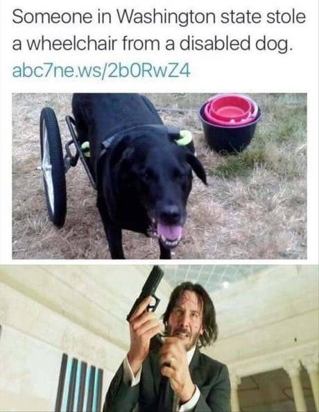dog meme with John Wick holding a gun after hearing someone stole a wheelchair from a disabled dog