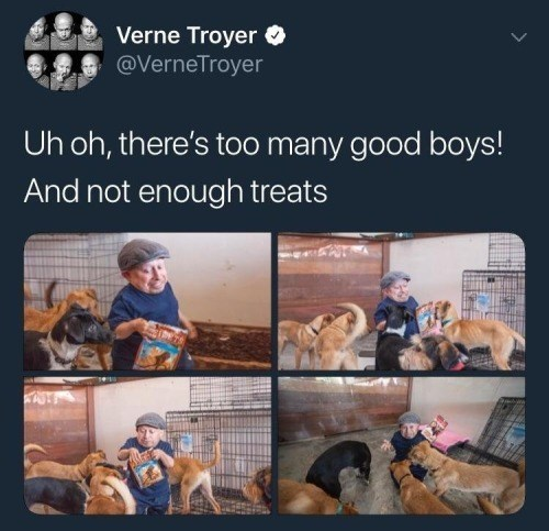 dog meme with Verne Troyer giving dogs a treat
