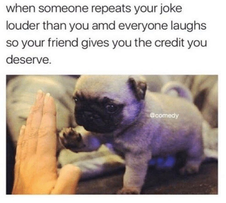 dog meme about your friend giving you the credit for your joke