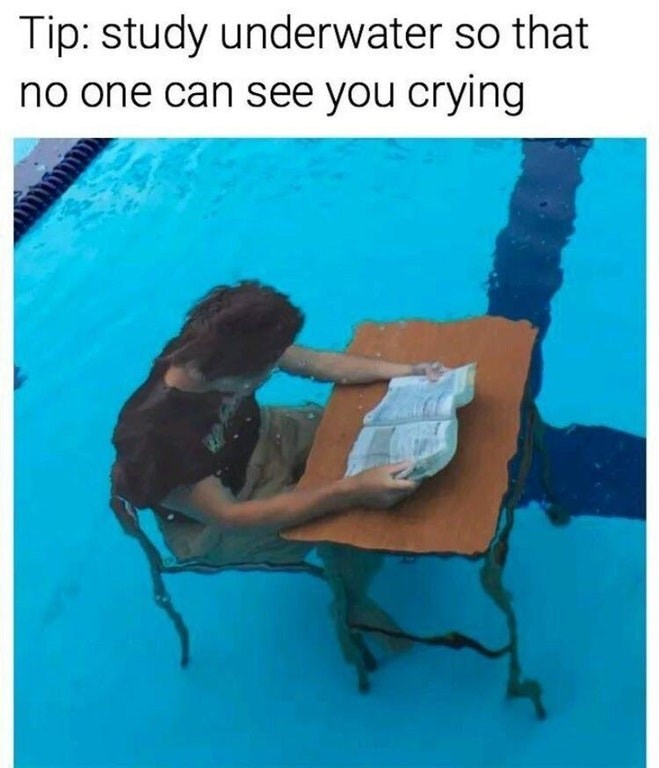 Photo of a student studying underwater