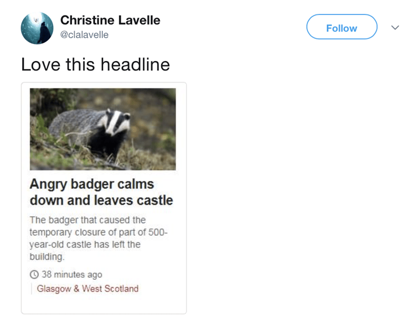 Text - Christine Lavelle Follow @clalavelle Love this headline Angry badger calms down and leaves castle The badger that caused the temporary closure of part of 500- year-old castle has left the building. 38 minutes ago Glasgow & West Scotland