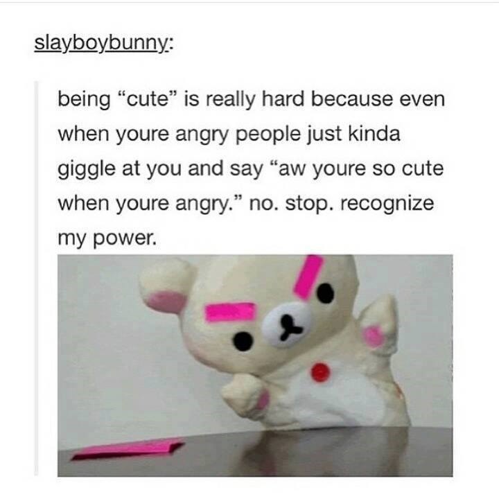 """funny tumblr post picture angry teddy bear being """"cute"""" is really hard because even when youre angry people just kinda giggle at you and say """"aw youre so cute when youre angry."""" no. stop. recognize my power."""