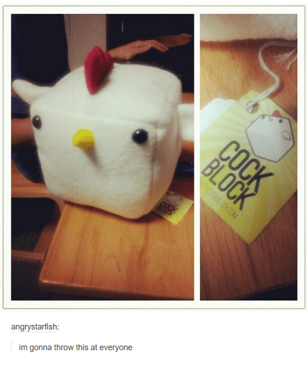 funny tumblr post im gonna throw this at everyone cube shaped chicken toy