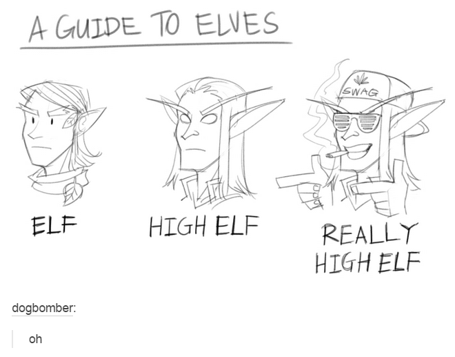 funny tumblr post A GUIDE TO ELVES SWAG ELF HIGH ELF REALLY HIGH ELF dogbomber: oh