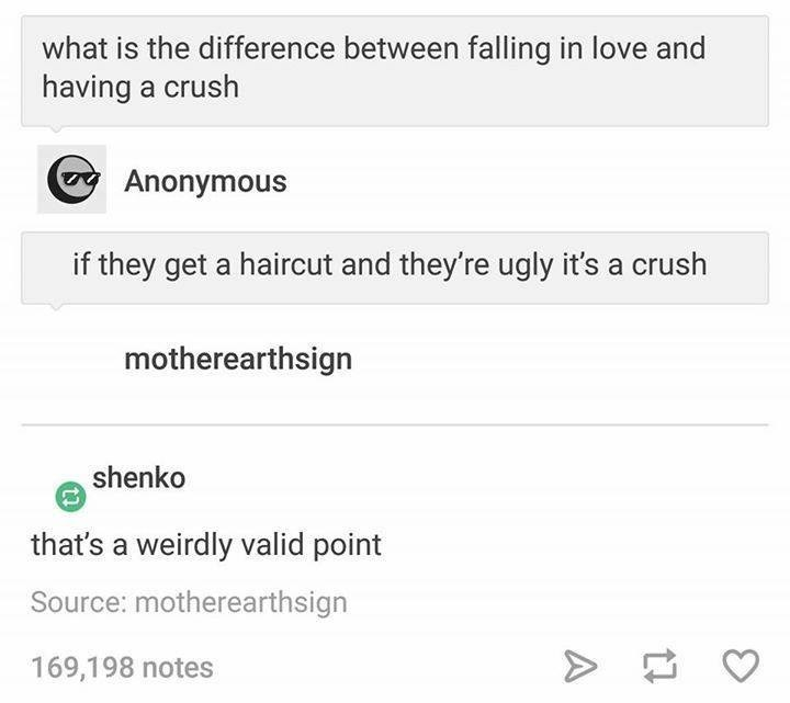 funny tumblr post what is the difference between falling in love and having a crush Anonymous if they get a haircut and they're ugly it's a crush motherearthsign shenko that's a weirdly valid point Source: motherearthsign 169,198 notes