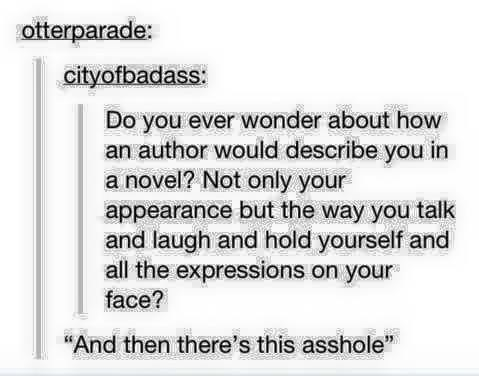 """funny tumblr post Do you ever wonder about how an author would describe you in a novel? Not only your appearance but the way you talk and laugh and hold yourself and all the expressions on your face? And then there's this asshole"""""""