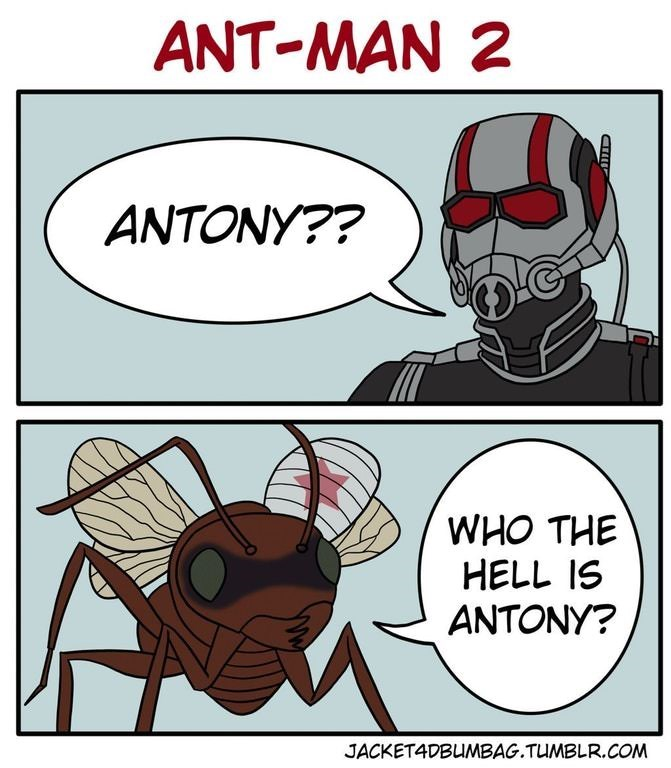 Cartoon - ANT-MAN 2 ANTONY?? WHO THE HELL IS ANTONY? JACKETADBUMBAG.TUMBLR.COM