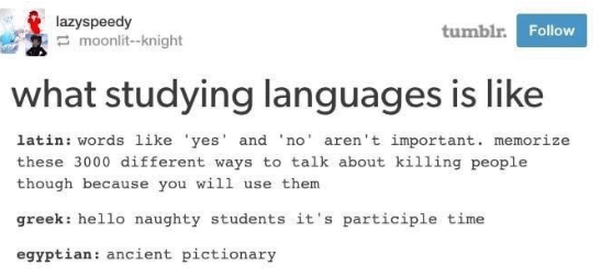Text - lazyspeedy moonlit-knight tumblr. Follow what studying languages is like latin: words 1ike 'yes' and 'no aren't important. memorize these 3000 different ways to talk about killing people though because you will use them greek: hello naughty students it's participle time egyptian: ancient pictionary